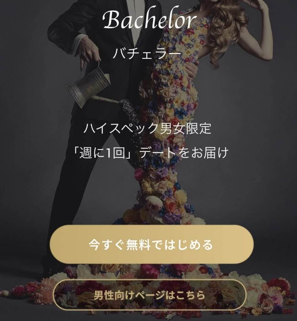 bachelor web