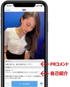 ハッピーメール自己紹介画面イメージ